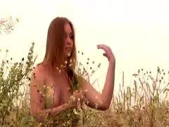 Linda flor do campo